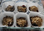 Date and cranberrycrumbles