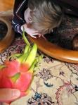 Oh No! It's Dragon fruit... Hide!