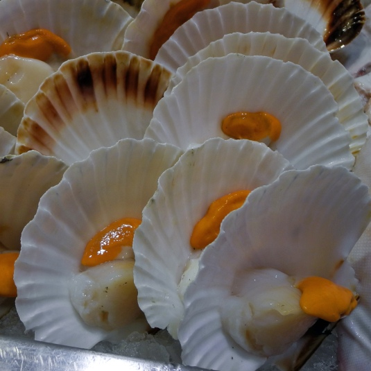 Scallops on the shell. The white nut is the edible portion, but the coral, the reproductive gland, is also edible.