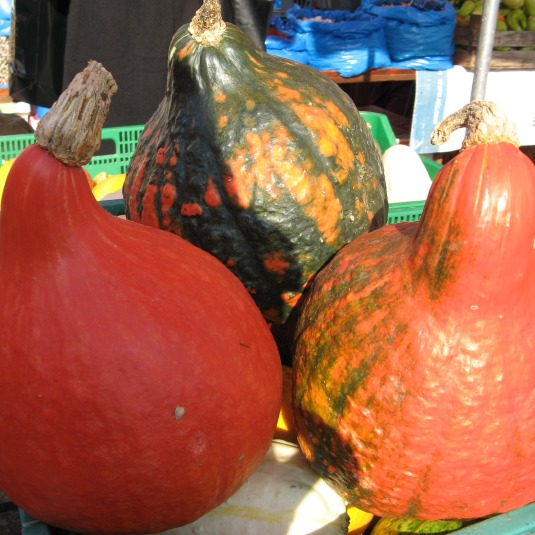 Pretty squash from Zagreb market
