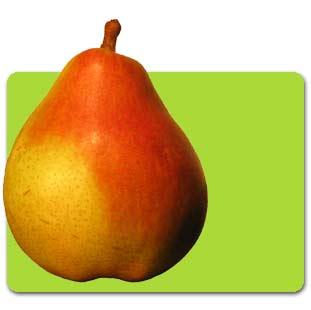 comice_pear