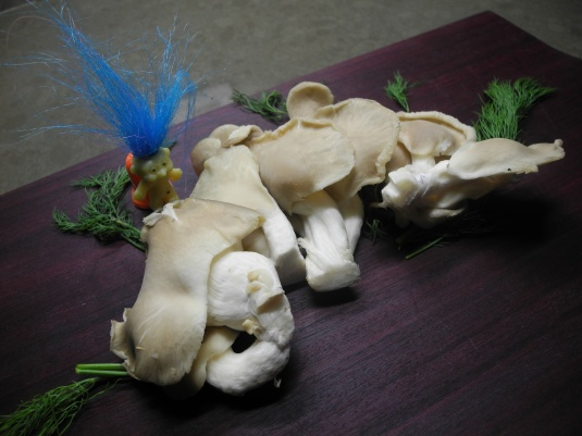 Blue oyster mushrooms weave a safety net for your heart