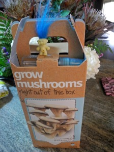 Grow mushrooms in your own castle