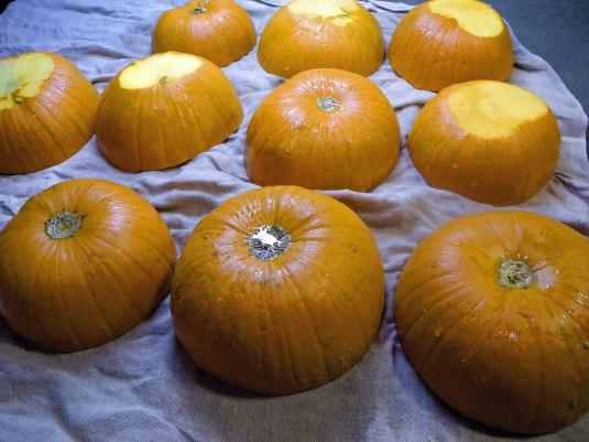 pumpkin bowls