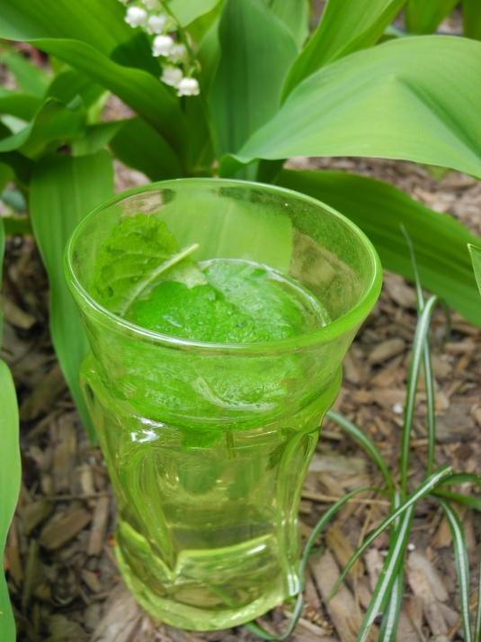 Cinque terre cocktail - chartreuse